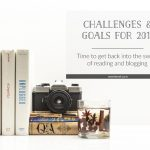 Challenges and Goals for 2019