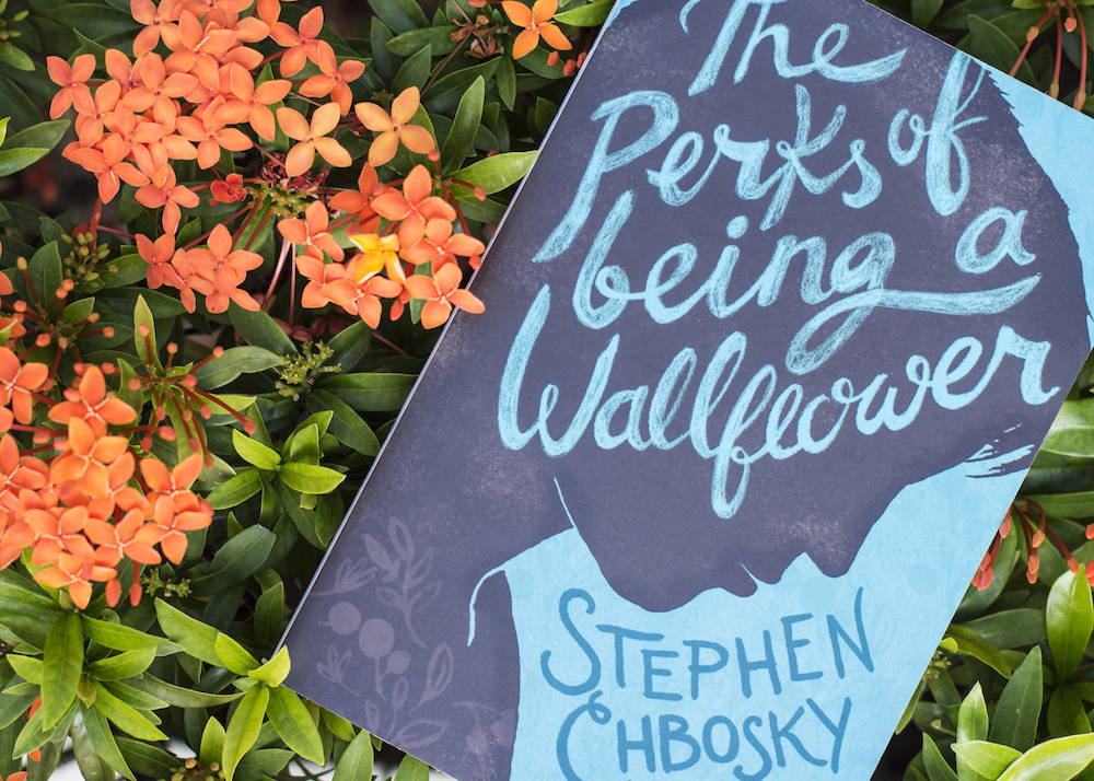 The Perks of Being a Wallflower by Stephen Chbosky among Ixoras